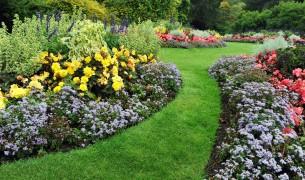 Easy-Garden